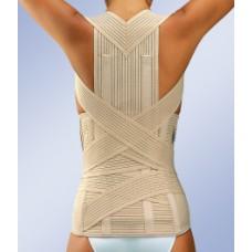 Детский усиленный грудо-поясничный бандаж LT-330 Orliman +